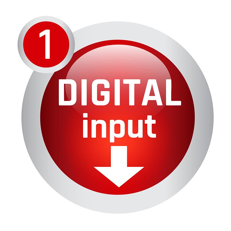 Icon 1 Input