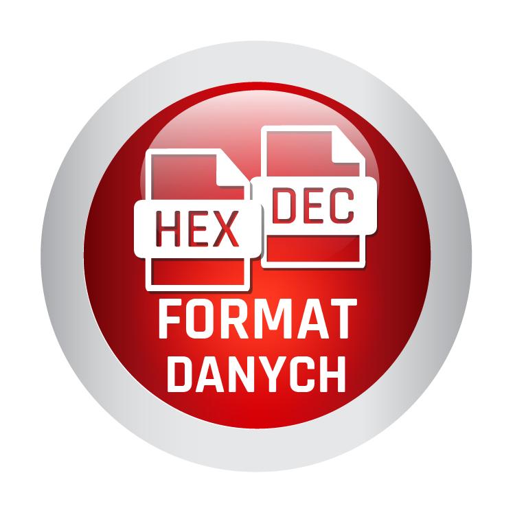 Icon-Format