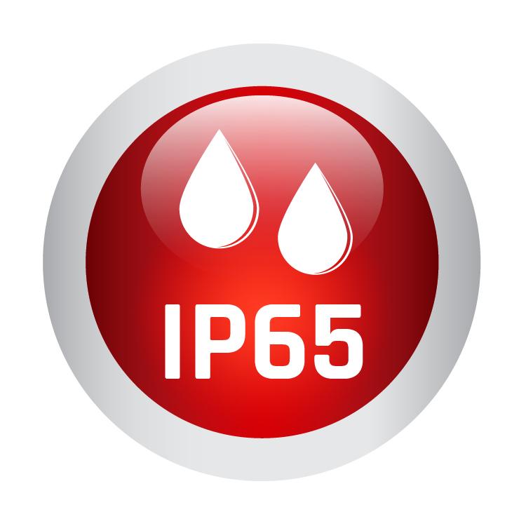 Icon IP